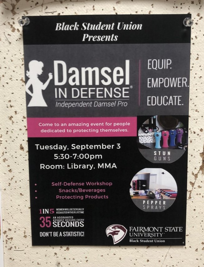 damsels-in-defense