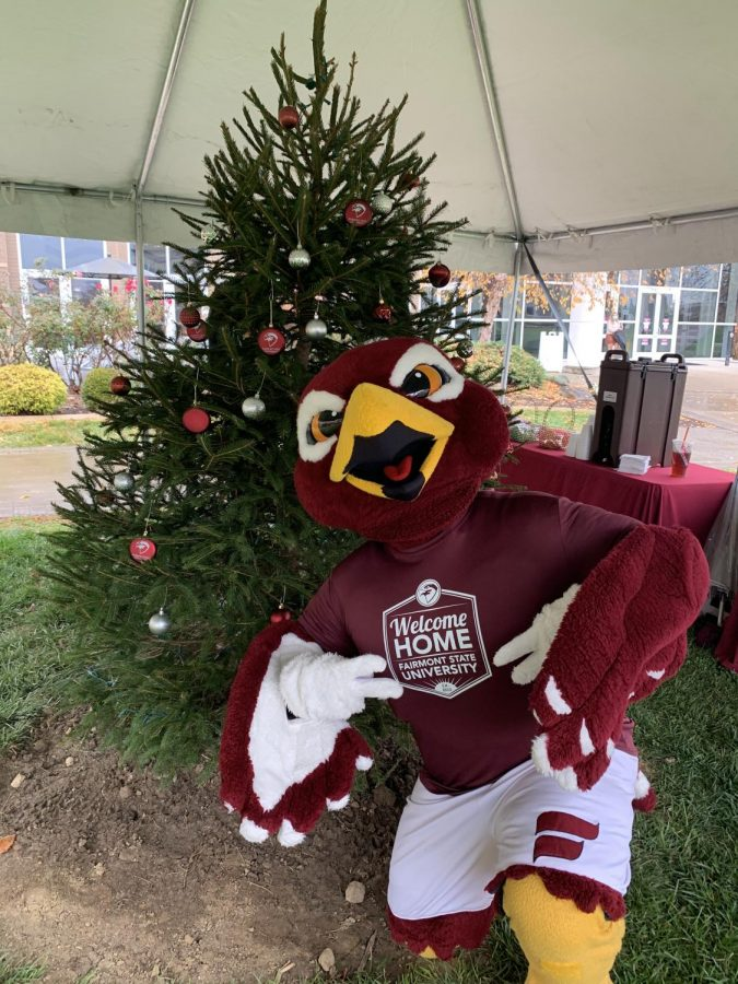 Freddie the Falcon poses for a photo with the 2020 FSU Christmas tree in the Falcon Center Quad.